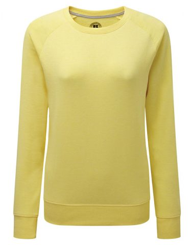Ladies' HD Raglan Sweat